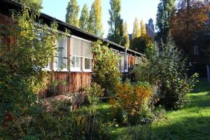 Bild von der Stura Baracke von Seite des tuuwi-Gartens.