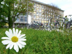 """3. Platz """"Räder und Wiesen statt Autos und Teer"""" von Vilana (Psychologie)"""